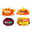 autumn sale best offer on vector image vector image