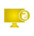 electronic money icon monitor icon vector image vector image