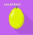 jackfruit icon flat style vector image