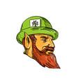leprechaun head side drawing vector image vector image