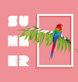 summer paradise design of bird and palm tree vector image
