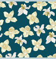 citrus and jasmine flowers in in vector image vector image