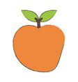 delicios apple fruit vector image vector image