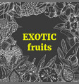 exotic fruits square frame vector image vector image