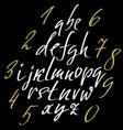hand drawn elegant calligraphy font modern brush vector image vector image