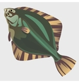 Image of flatfish in the flat style vector image vector image