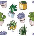 seamless pattern with hand drawn succulents and vector image