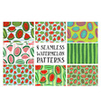 set of patterns from watermelon vector image