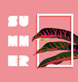 summer paradise design of tropical jungle plant vector image vector image