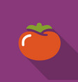 tomato flat icon with shadow vector image vector image