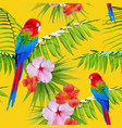 exotic tropical summer decoration seamless pattern vector image