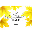 autumn poster with lettering and yellow vector image vector image