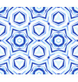 kaleidoscope white blue star background vector image vector image