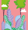 landscape foliage leaves nature trees sky vector image