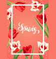 spring background with red and white tulips vector image vector image