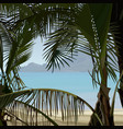 view of tropical coast palms from the bushes vector image vector image