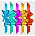 set of shiny satin ribbons vector image