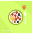 Plate with fruits berries and glass of juice vector image