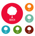 beech tree icons circle set vector image