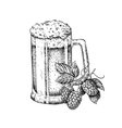 Beer glass mug with hop Sketch vector image