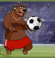 cartoon bear in shorts and with a soccer ball vector image