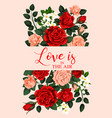 love and roses banner vector image vector image