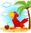 parrot on beach vector image vector image