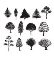 trees silhouette decoration hand drawn sketches vector image
