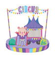 cute circus bear with layer and kiosk vector image
