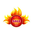 hot sale best offer round badge with flame splash vector image