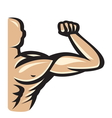 muscle10 resize vector image vector image