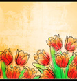 Retro watercolor tulips vector image vector image