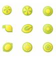 set abstract lemon icons vector image vector image