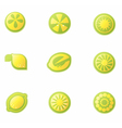 Set of abstract lemon icons vector image vector image