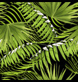 paradise summer pattern with tropical palm leaf vector image
