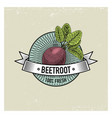beetroot vintage set of labels emblems or logo vector image vector image