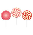closeup motley lollipops or candy icon vector image