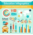 Education apple infographic vector image