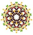 Colorful mandala motif vector image vector image