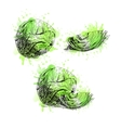 hand drawn set cabbage with green watercolor vector image vector image