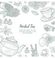 herbal tea banner template cafe restaurant menu vector image