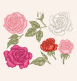 Pink red and white rose flowers in vintage style