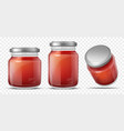 tomato sauce in glass jar realistic vector image vector image