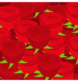 wallpaper pattern with of red roses vector image vector image