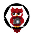 a beautiful cartoon red owl with camera sits