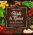 food seasoning herbs and spices condiments vector image