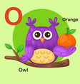 isolated animal alphabet letter o-owl orange vector image vector image