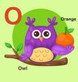 isolated animal alphabet letter o-owl orange vector image