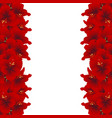 red amaryllis border - hippeastrum christmas vector image