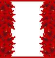 red amaryllis border - hippeastrum christmas vector image vector image